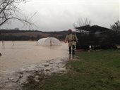 Floods, Demandice, 31.1.2013