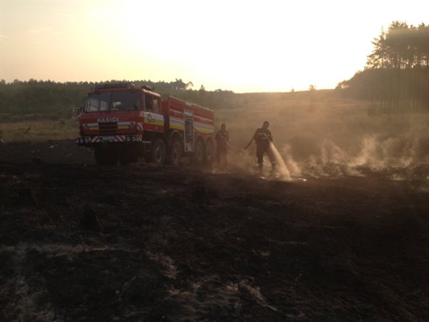 Massive forest cover fire extinguishing in Velke Levare